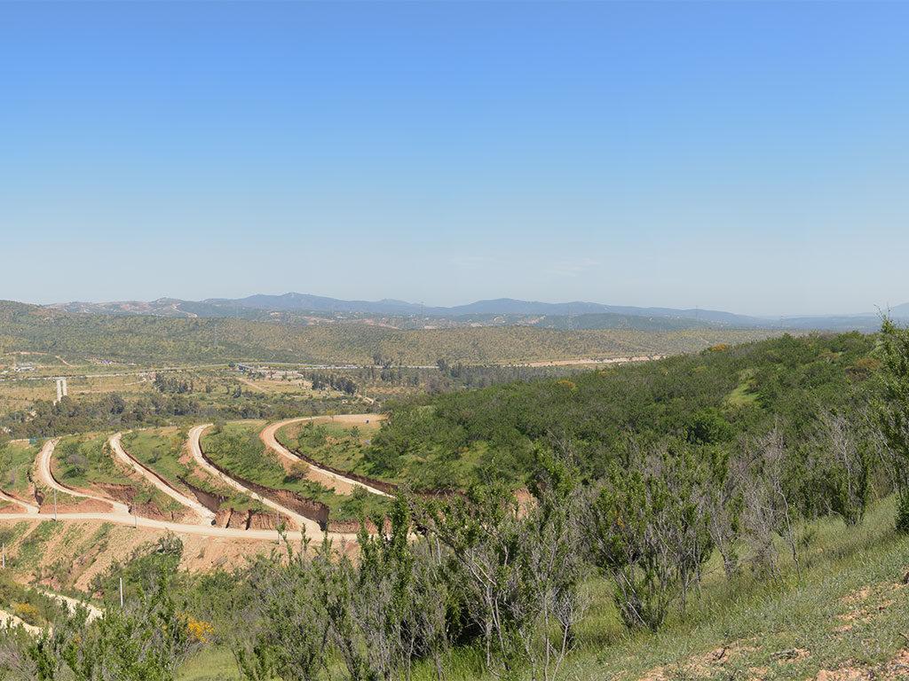 valle de limache 1