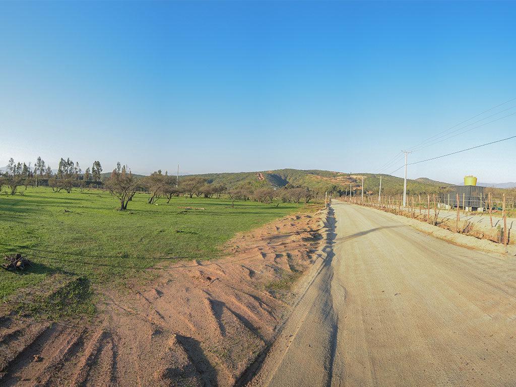 valle de limache 2