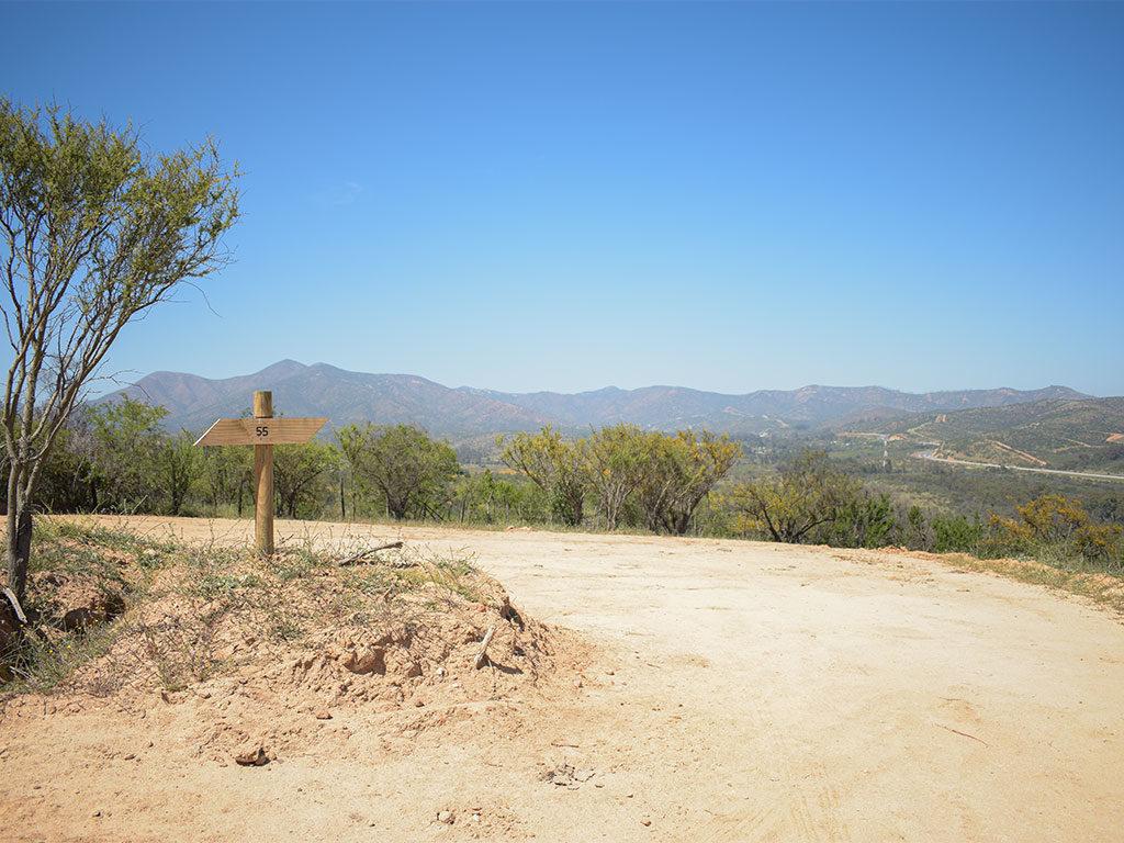 valle de limache 4