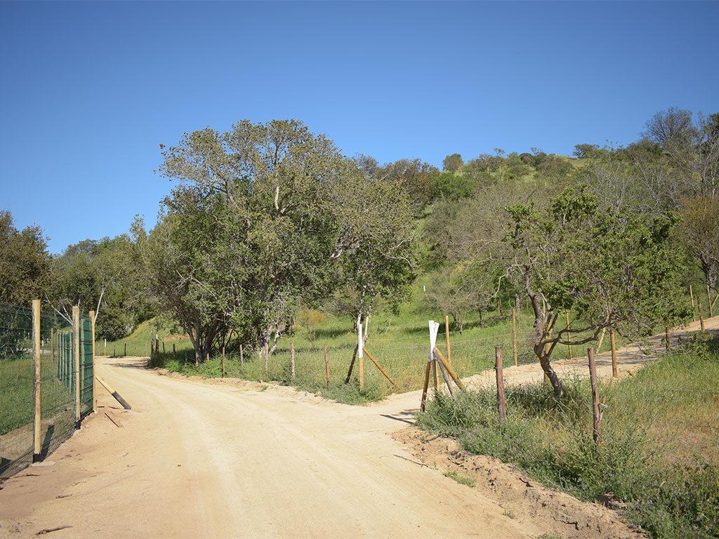 vistas del valle 7